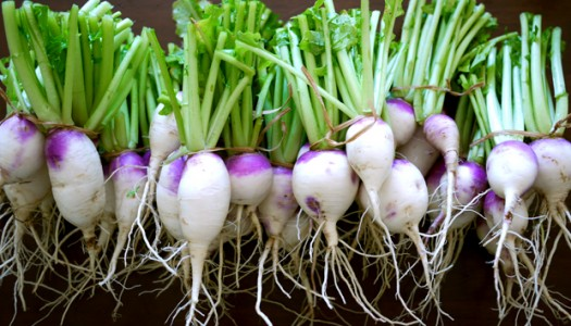Turnip For What?